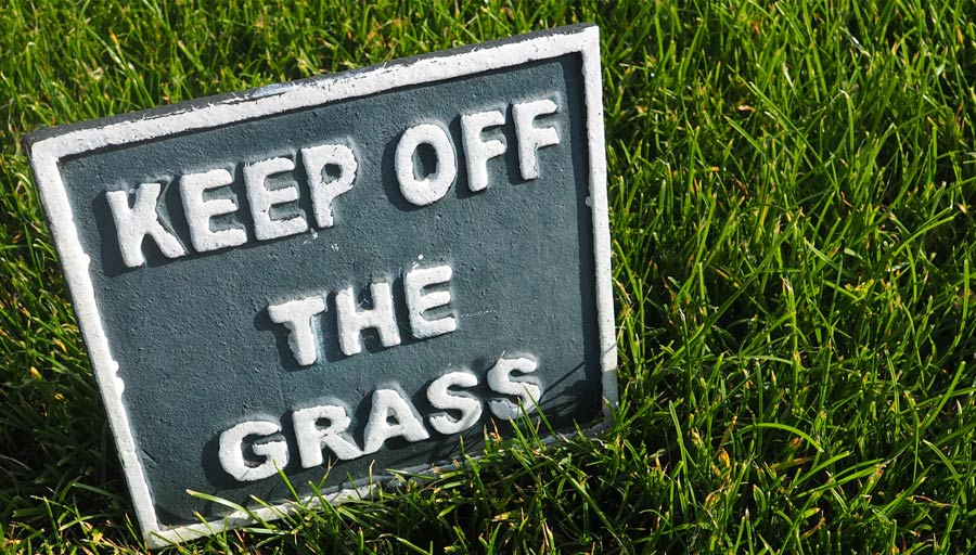 Picture of a keep off the grass sign